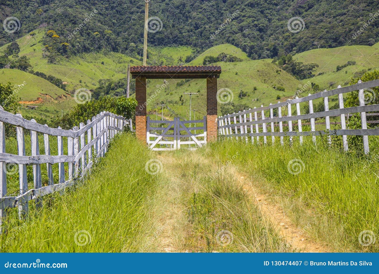 La pista visiva del mazomba pilota di x ha visto in Rio de Janeiro
