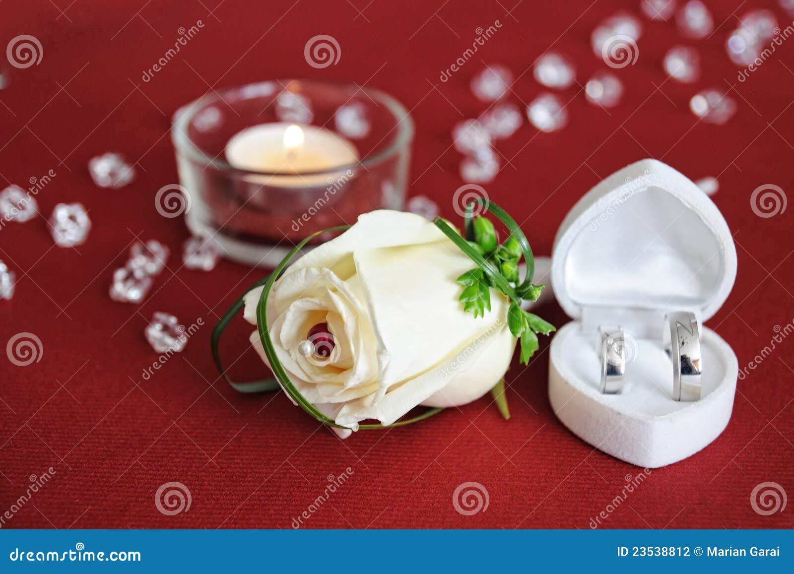 La piuma decorativa Wedding è aumentato