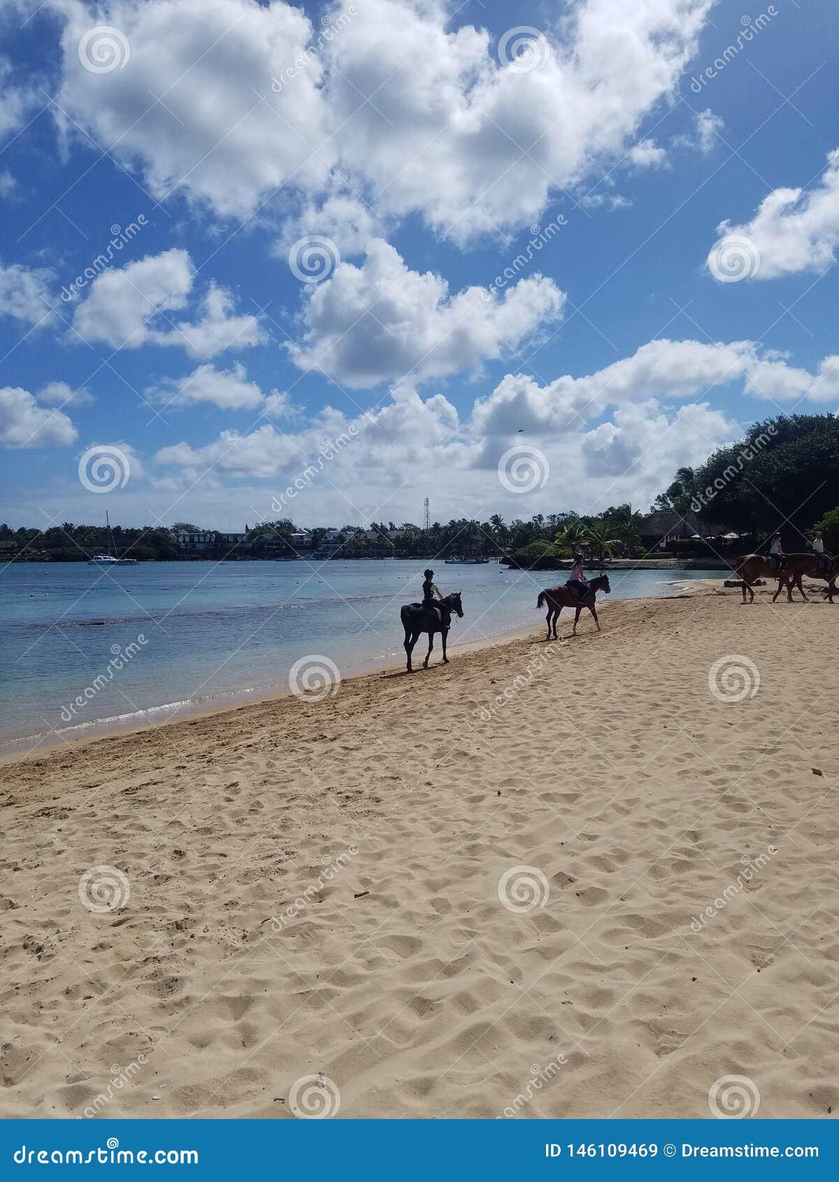 ? la plage