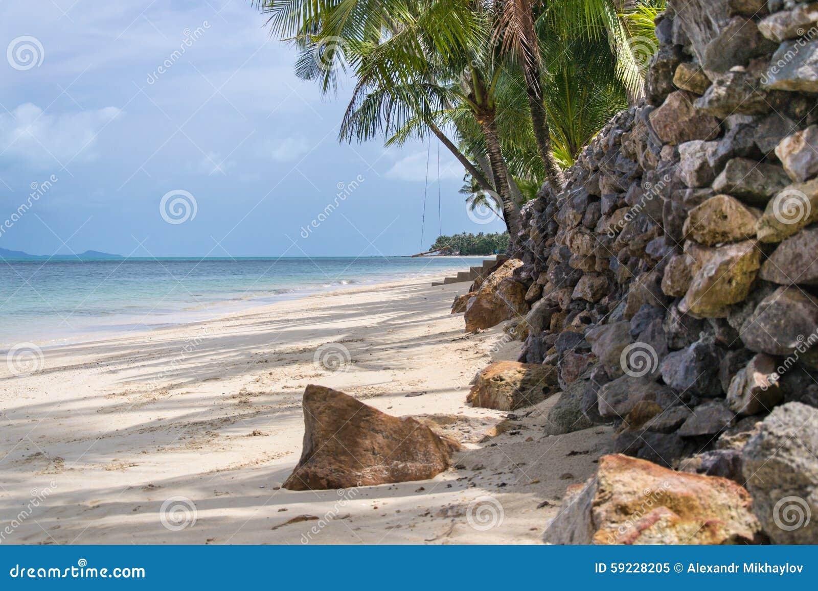 Download La playa Samui imagen de archivo. Imagen de árboles, calor - 59228205