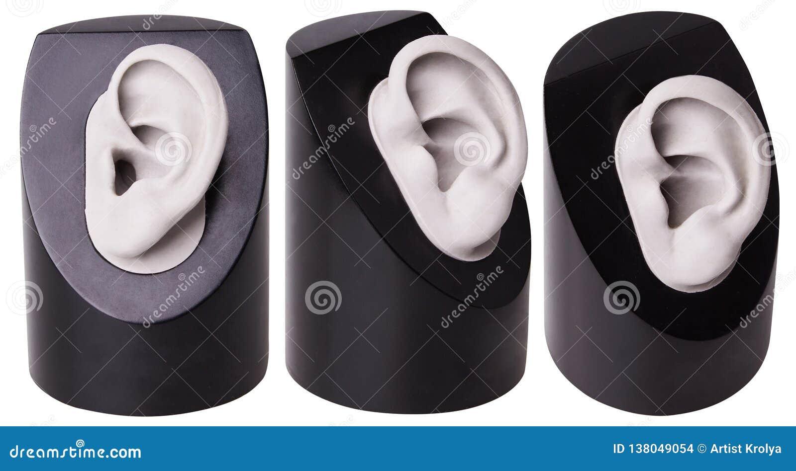 La pleine coquille de prothèse auditive d isolement Le choix du soin d audition de prothèse auditive Oreille en plastique Accesso