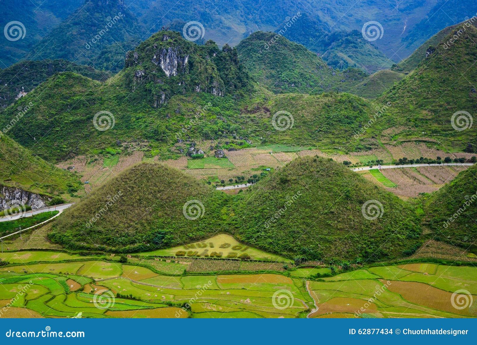 La poitrine féerique est située en ville de Tam Son, Quan Ba District, province de Ha Giang, Vietnam En septembre champs colorés