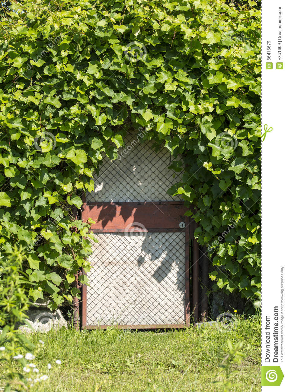 la porte au jardin secret photo stock image 56475679