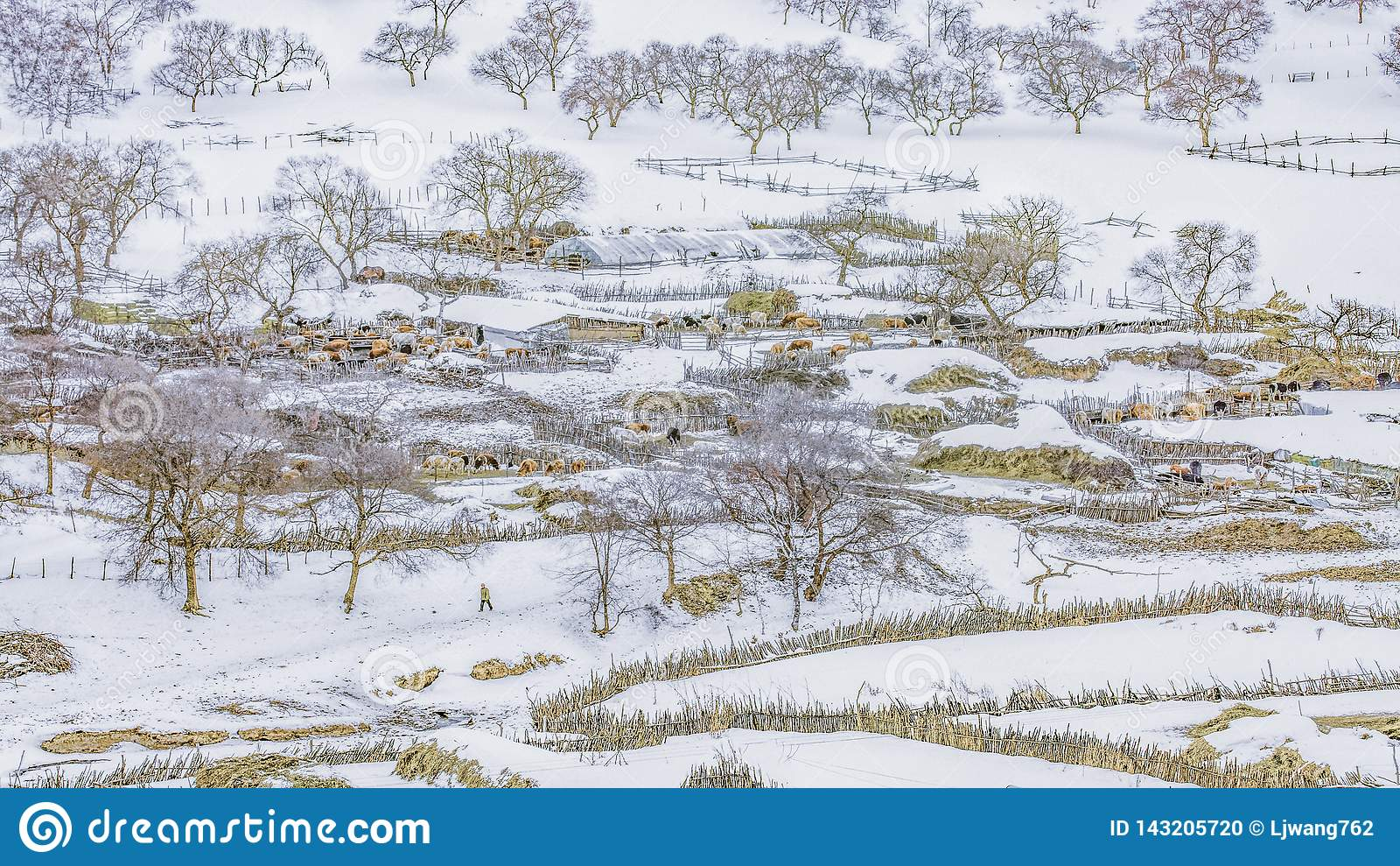 La première ferme de neige