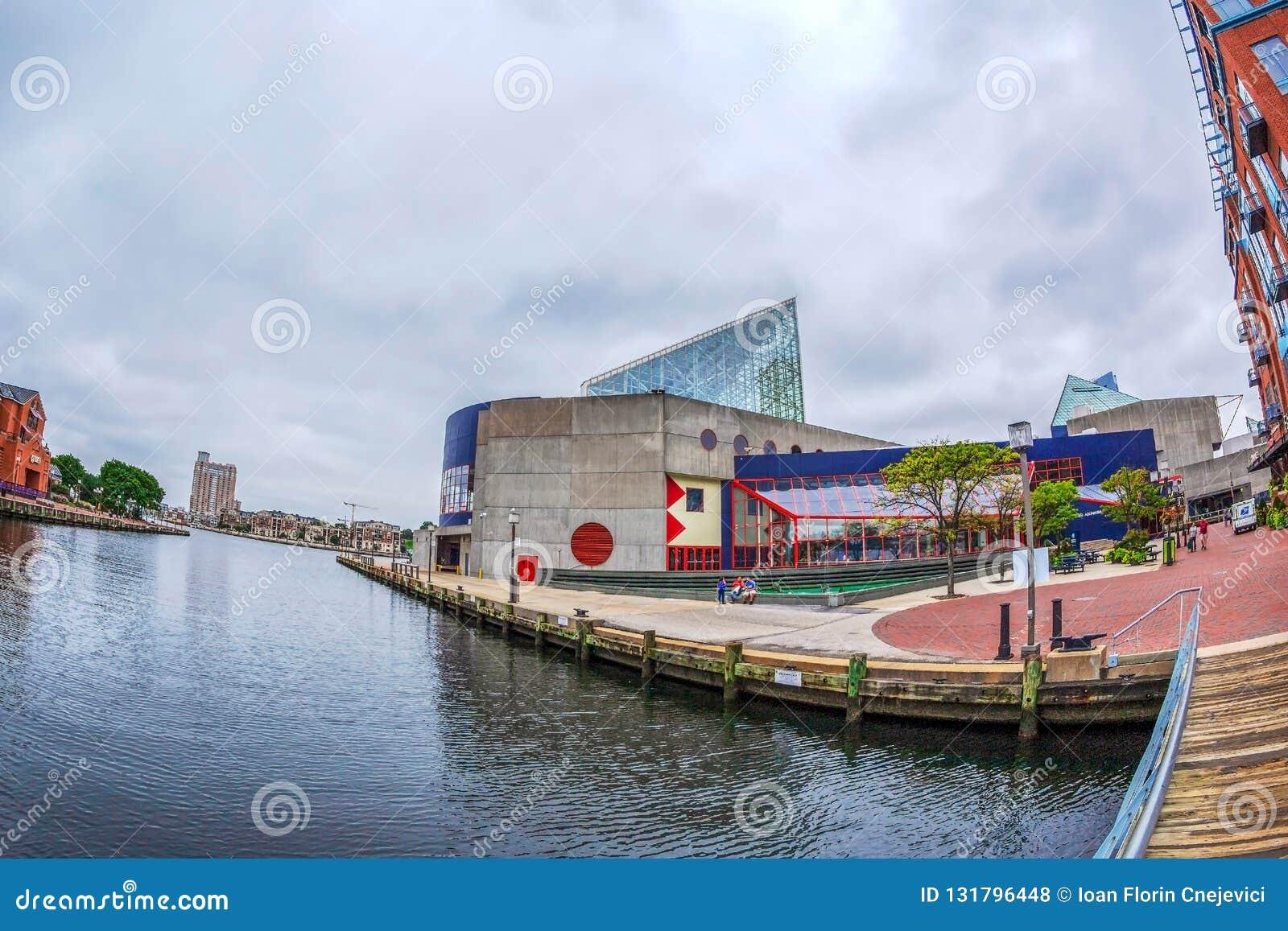 La  promenade  de la costa en el puerto interno con la opinión de ángulo grande del río de Potapsco naturalizado