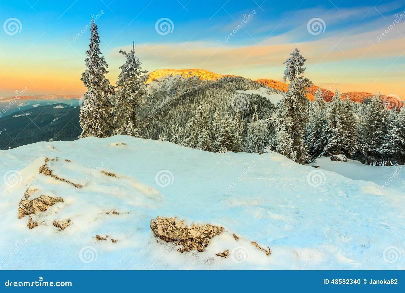 La puesta del sol y el invierno fantásticos ajardinan, Cárpatos, Rumania, Europa