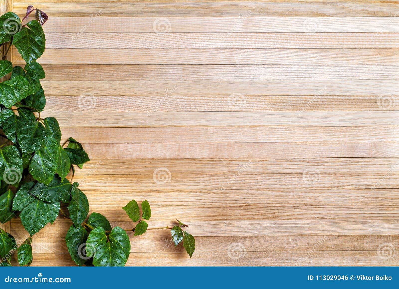 La rama torcida en los tableros