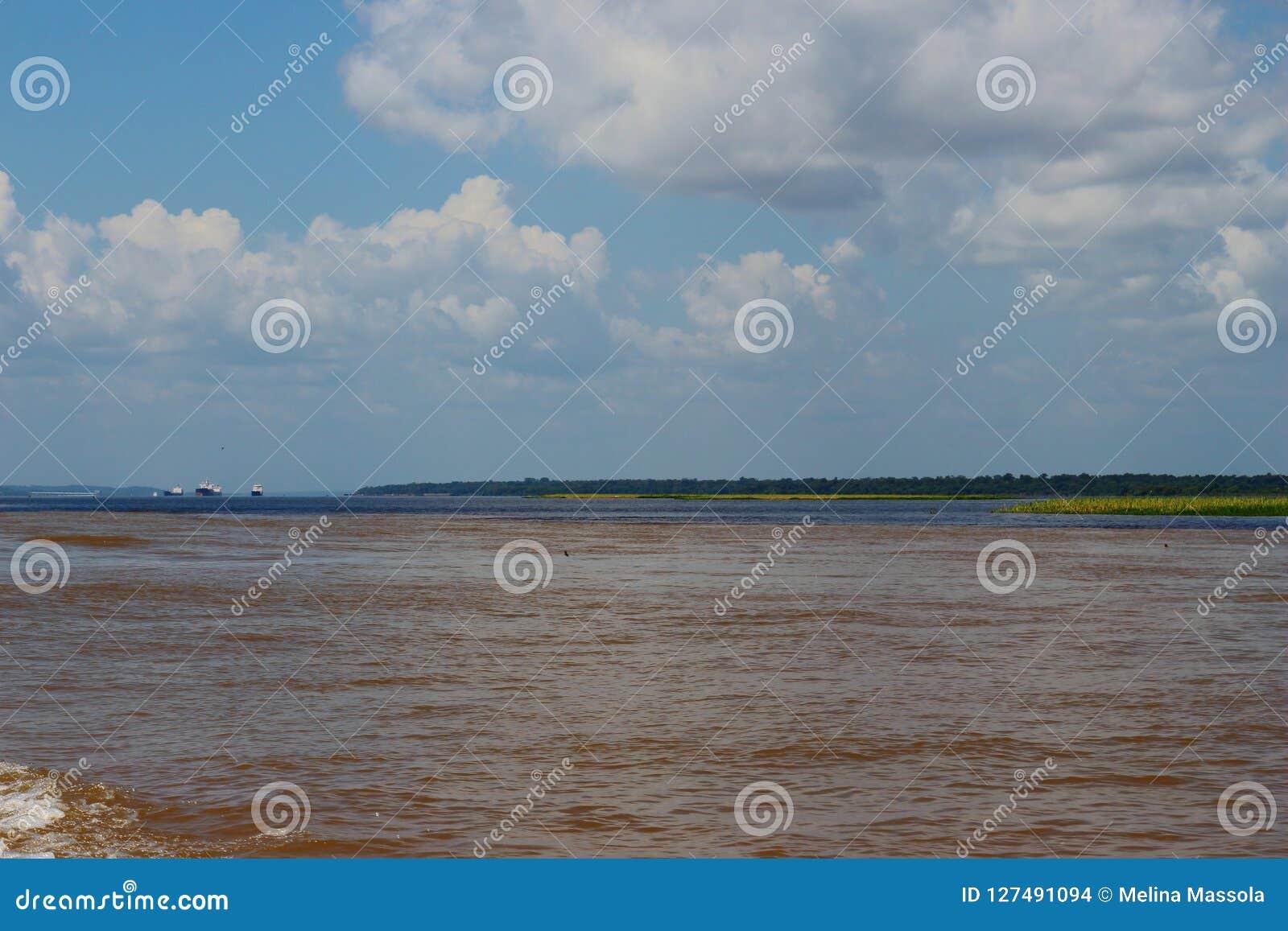 La rivière d Amazonas, la rivière brune de l eau ne la mélange pas à la rivière noire Il ` s un phénomène naturel Le Brésil il `