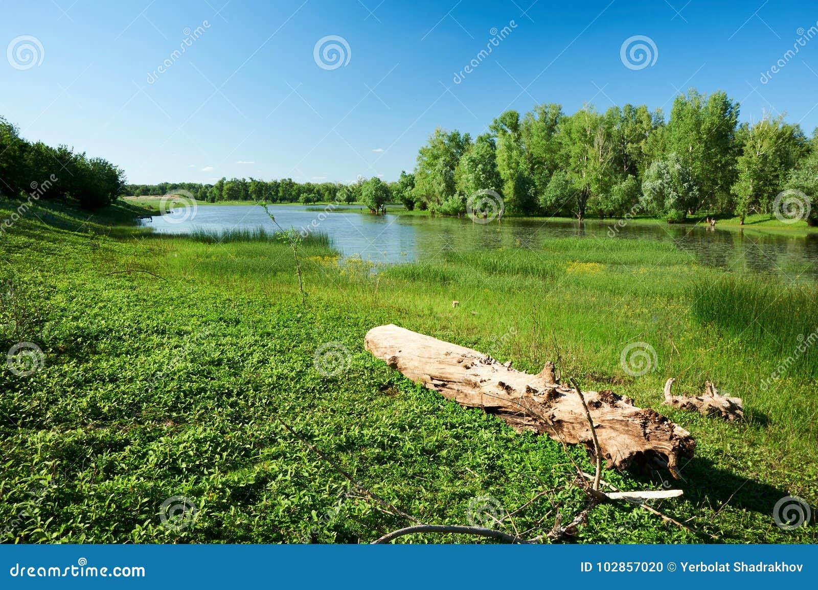 La rivière d Ural kazakhstan Région d Ouest-Kazakhstan