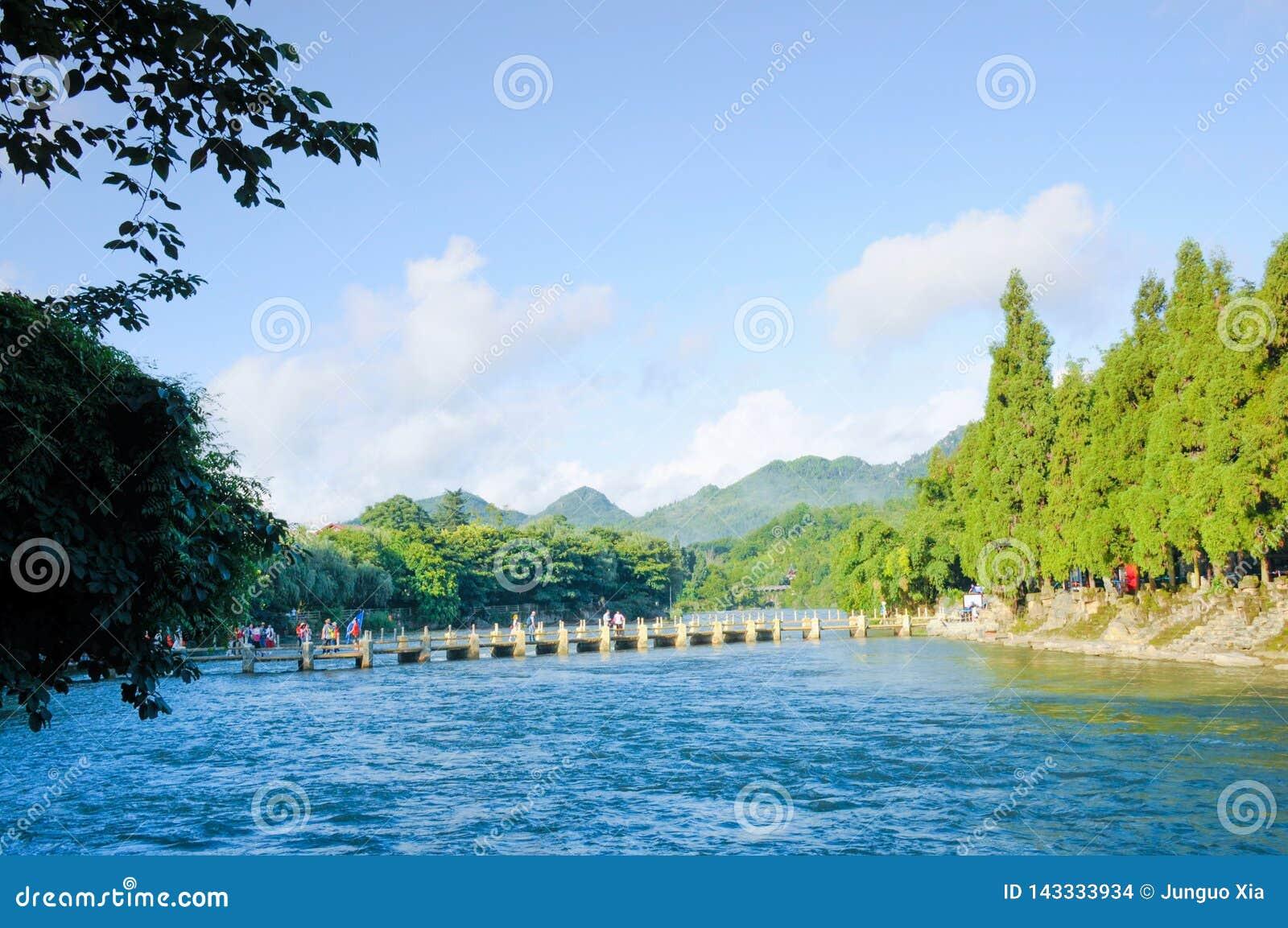 La rivière et les arbres verts