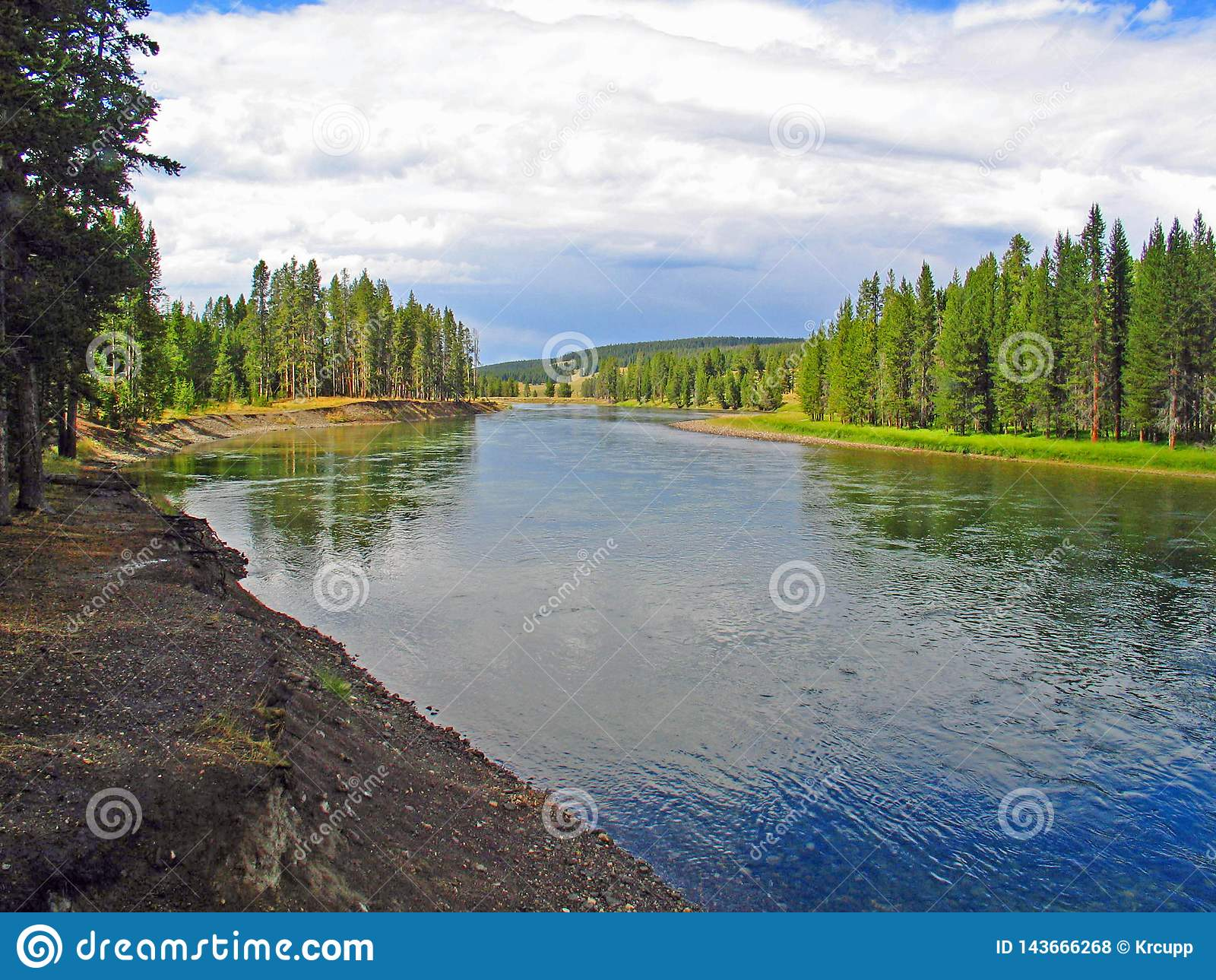 La rivière Yellowstone bien qu un pré vert