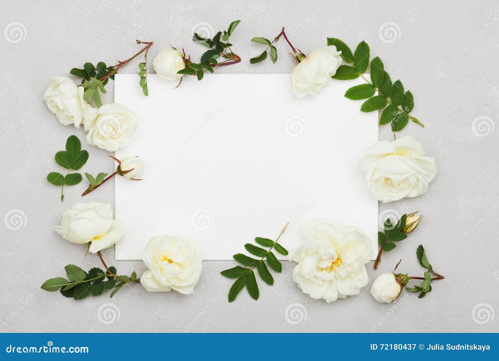 La rose de blanc fleurit, vert part et feuille de papier propre sur le fond gris-clair d en haut, beau modèle floral, configurati