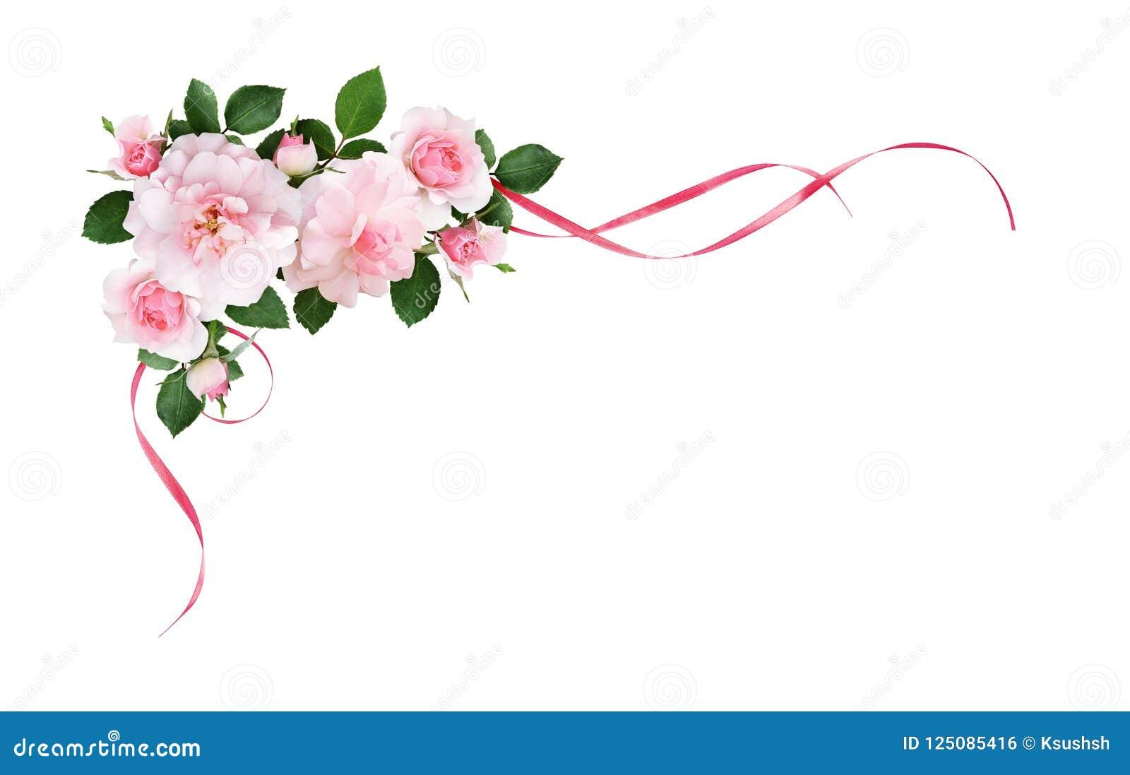 La rose de rose fleurit et les rubans ondulés par soie dans une disposition faisante le coin