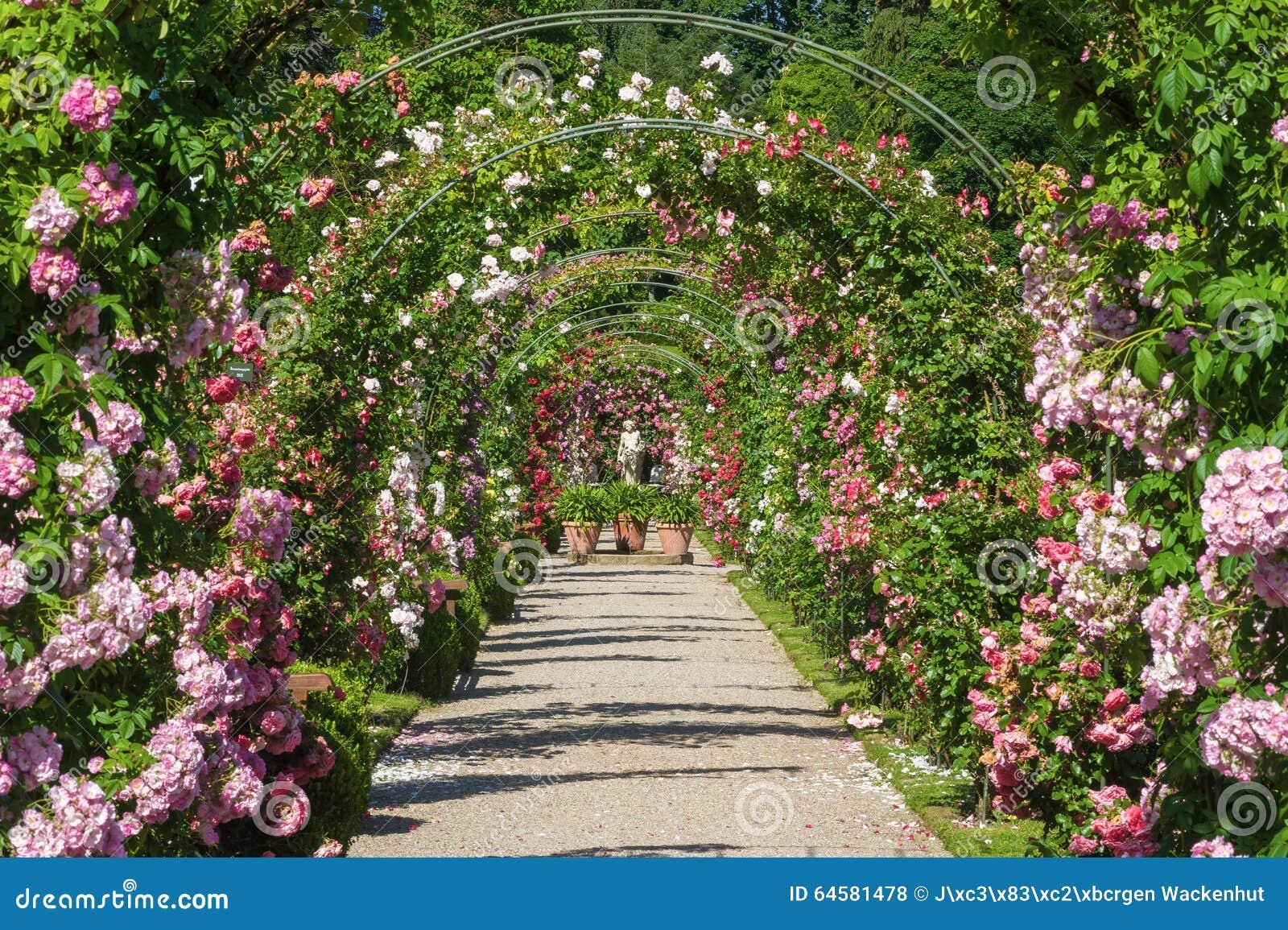 La roseraie Beutig dans Baden-Baden