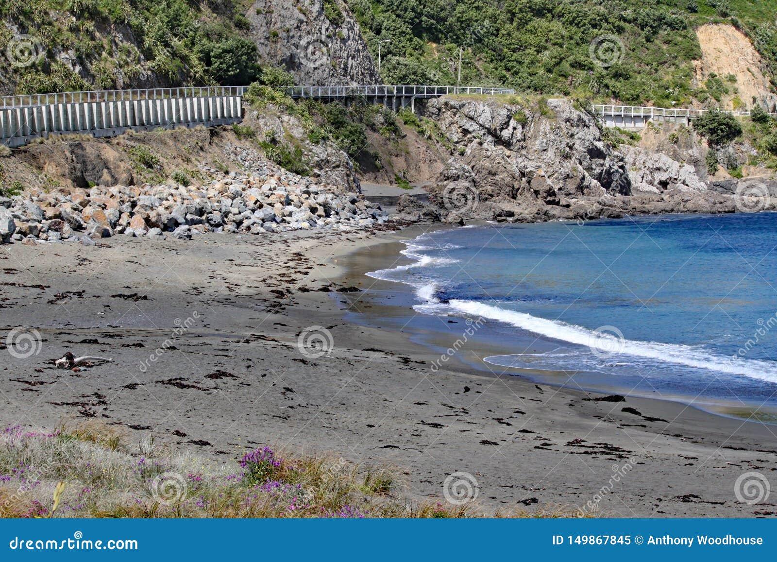 La route de côte passe par une baie tranquille avec des vagues lavant doucement dessus à la plage près de Wellington, Nouvelle-Zé