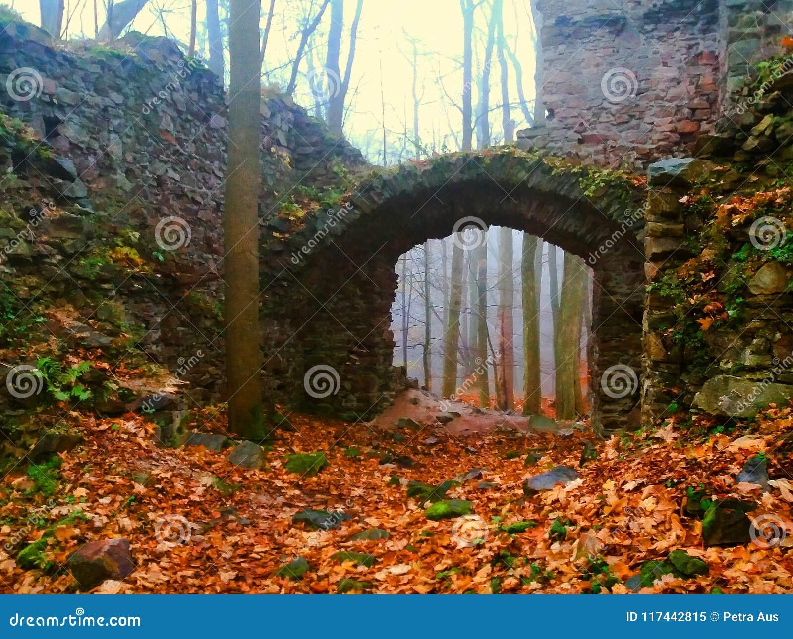 La ruine du château dans la forêt moyenne