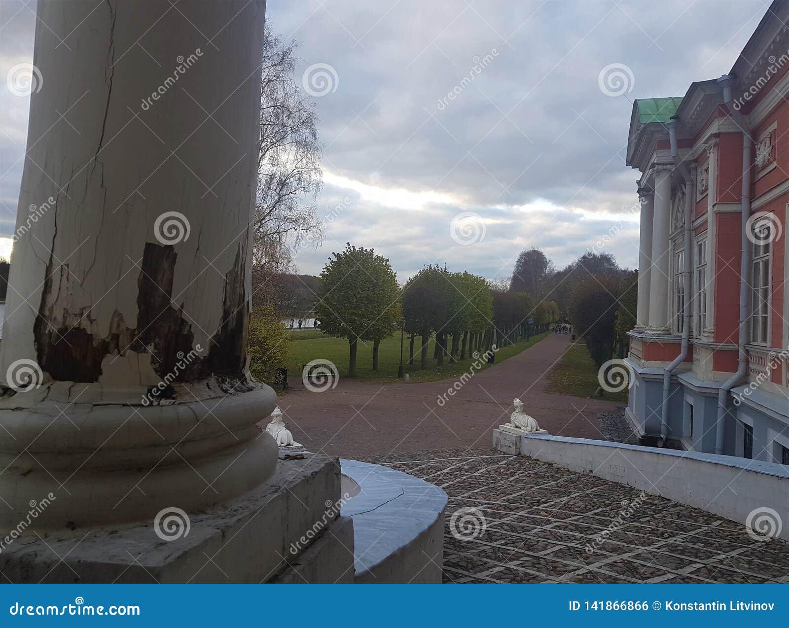 La Russia, Mosca, parco di Kuskovo, mattina nel parco, estate di Kuskovo, parchi di Mosca, proprietà terriera