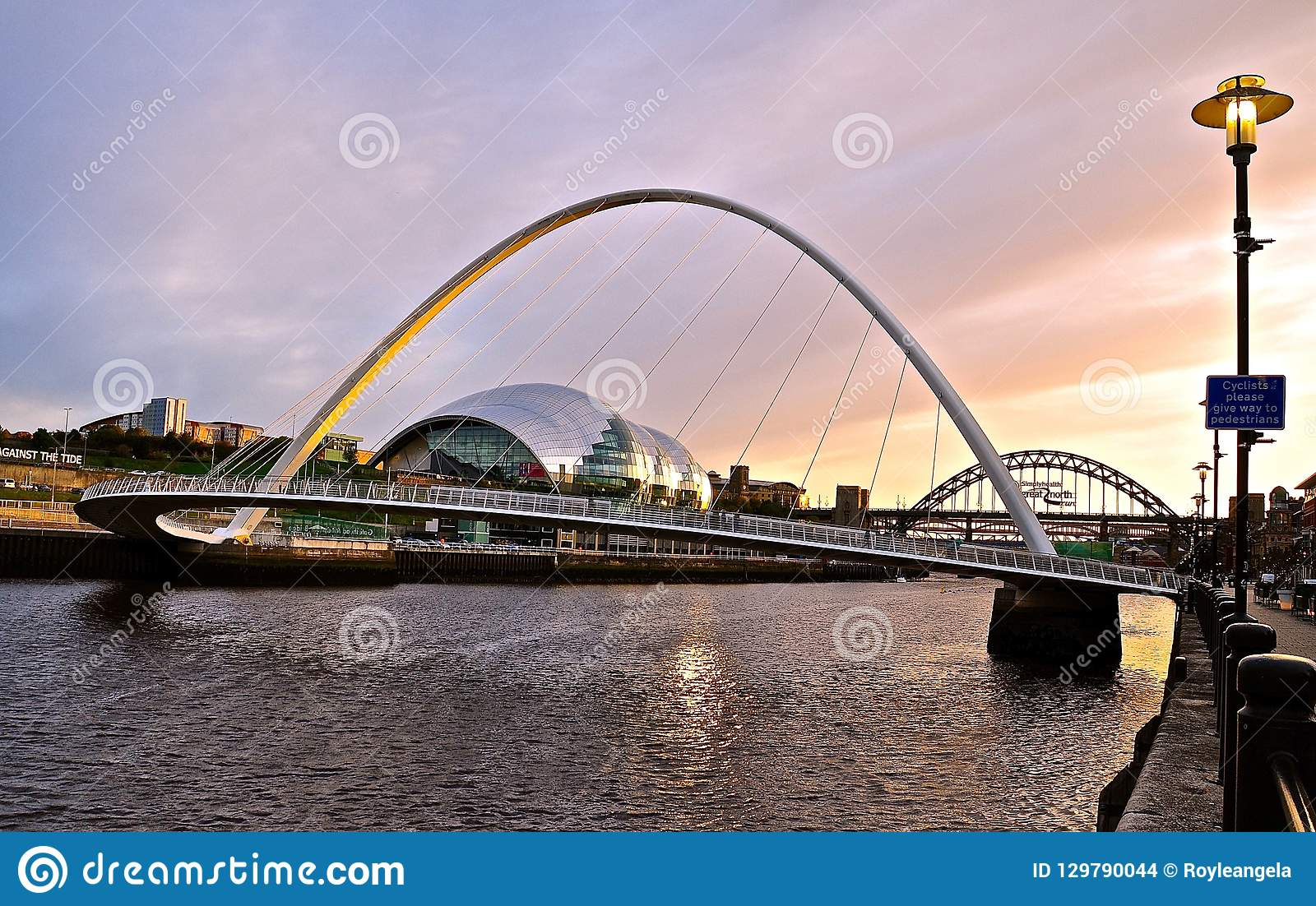 La salvia, Newcastle