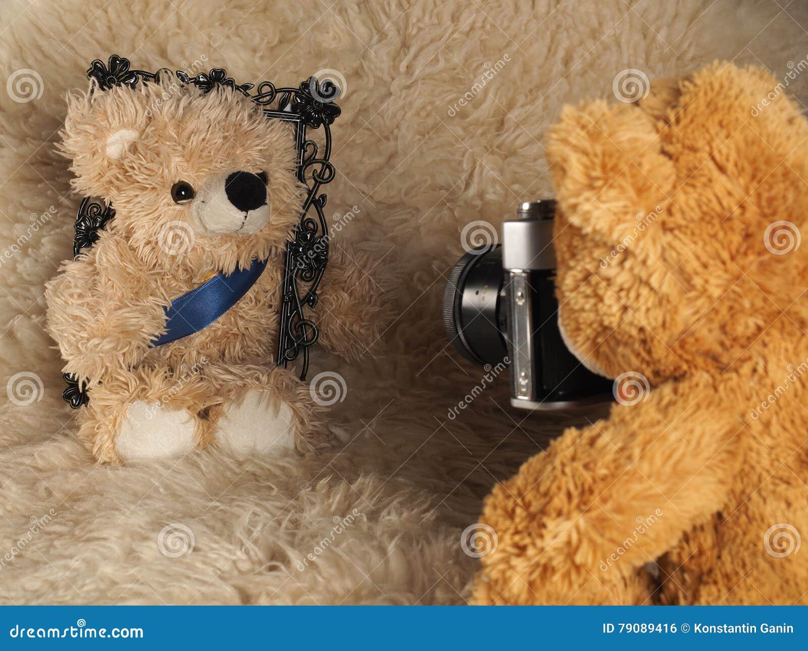 La sesión fotográfica del oso