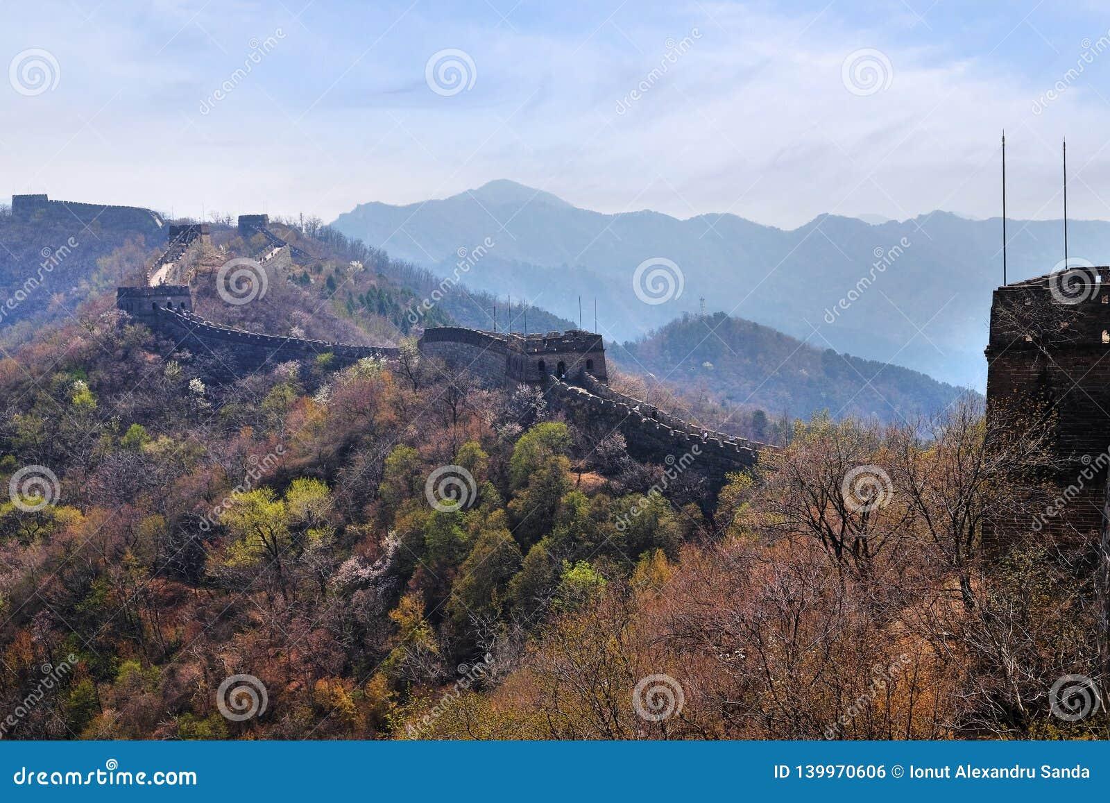 La sezione di Mutianyu della grande muraglia della Cina in un giorno di molla soleggiato, contro un cielo blu