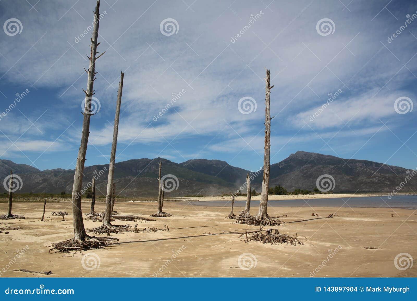La siccità che prende tenuta di Theewaterskloof