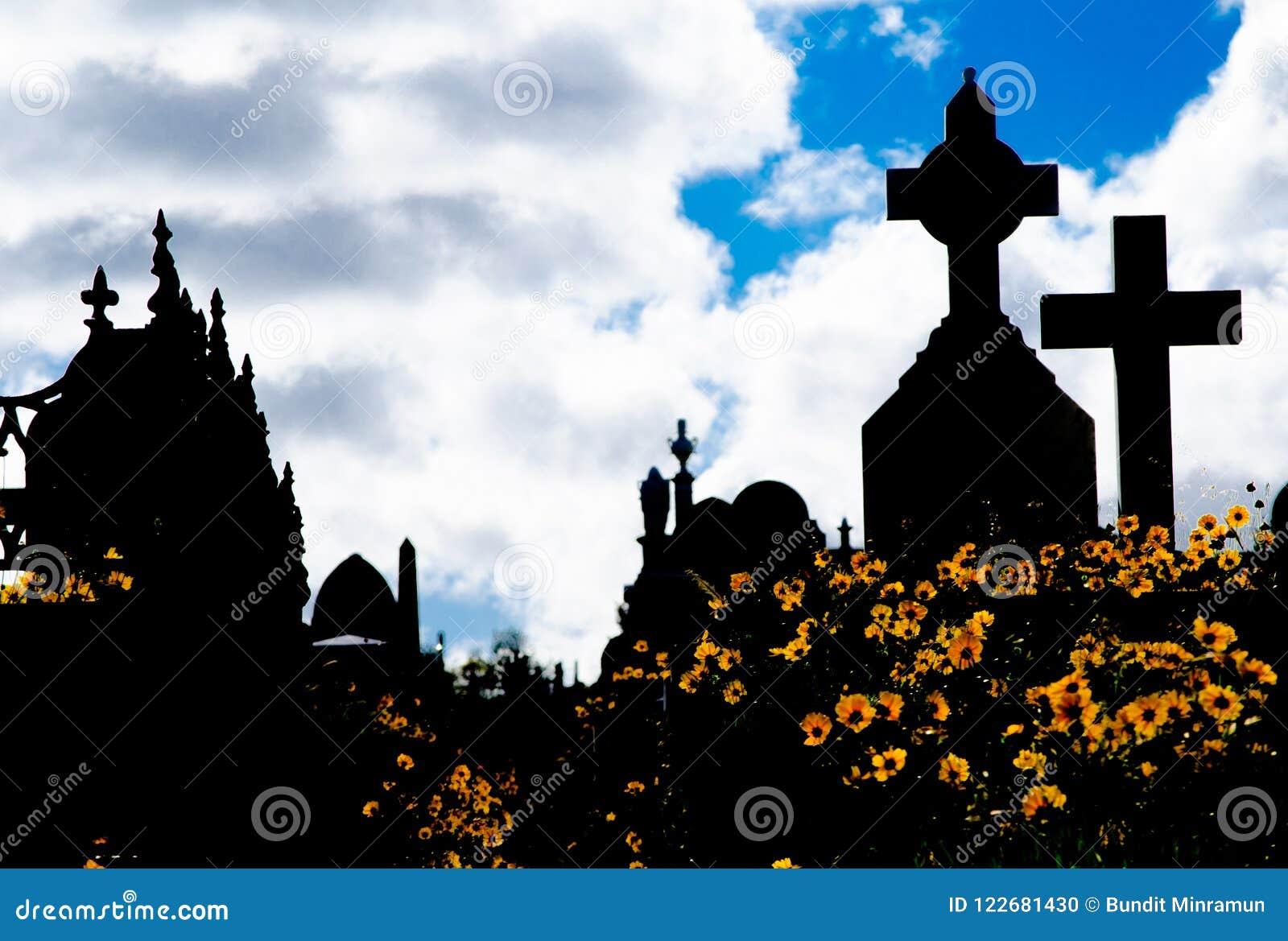 La silhouette du cimetière, l image montre à beaucoup la pierre tombale et le champ croisés de la fleur jaune de marguerite avec