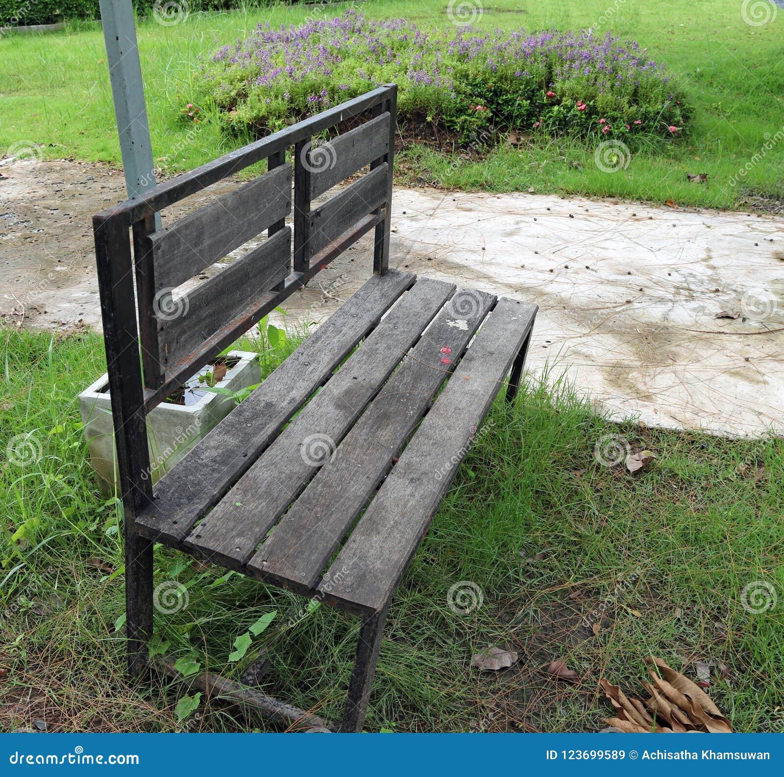 La silla de madera en el jardín