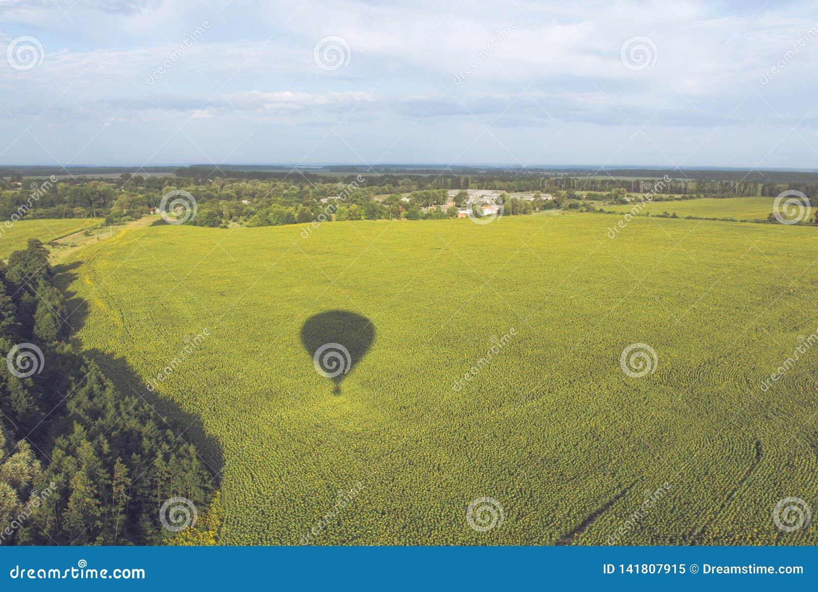 La sombra del globo y de la naturaleza