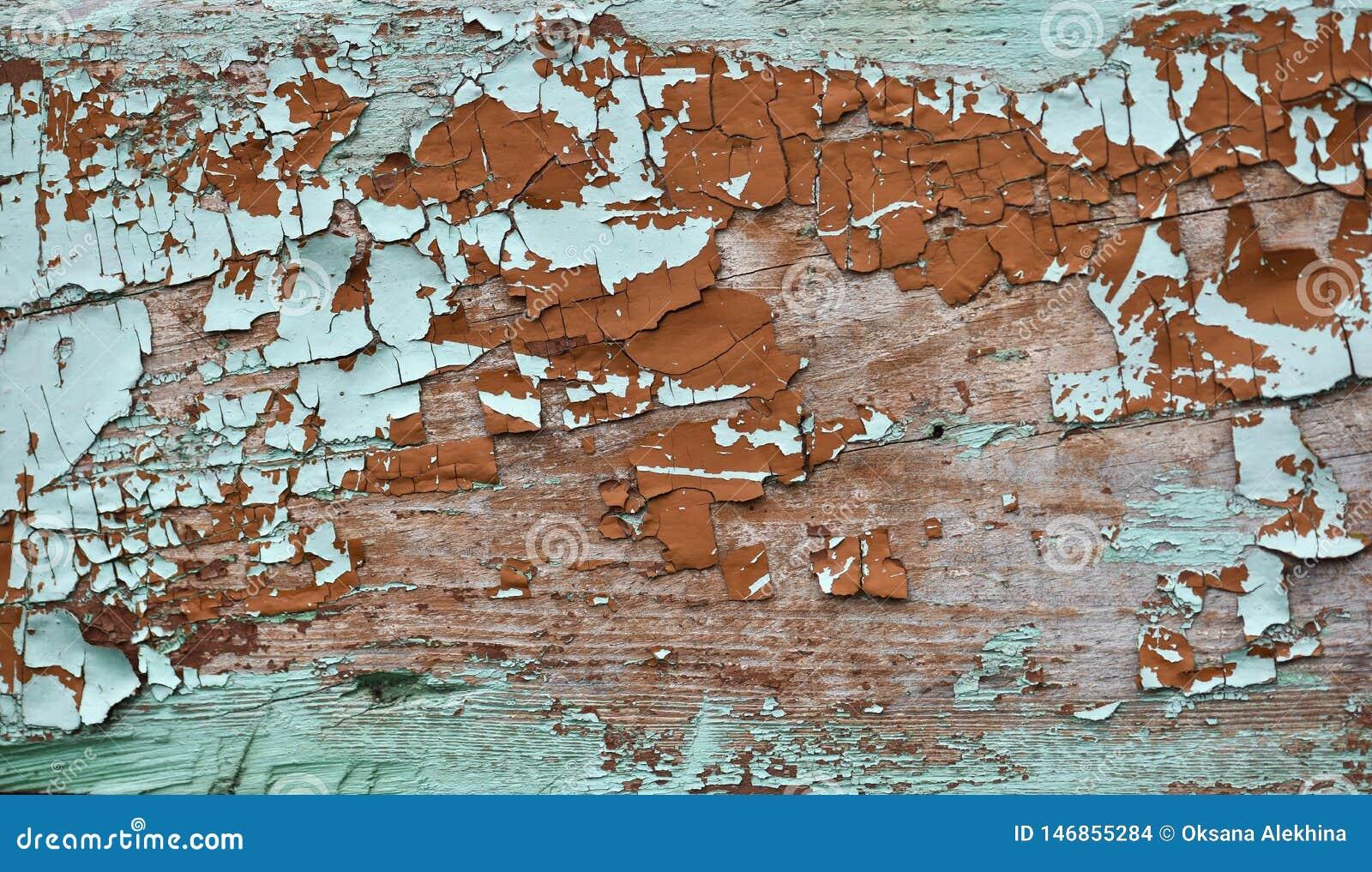 La sombra esmeralda coloreada agriet? la peladura de la pintura en la textura de madera