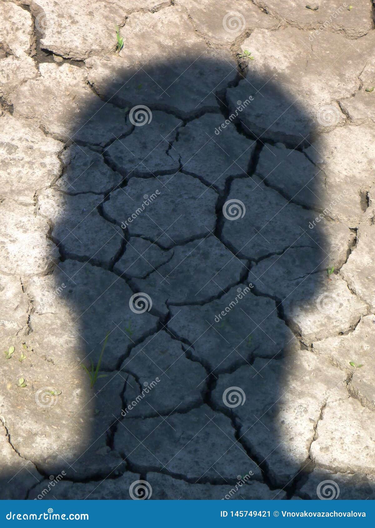 La sombra principal del hombre en la tierra seca