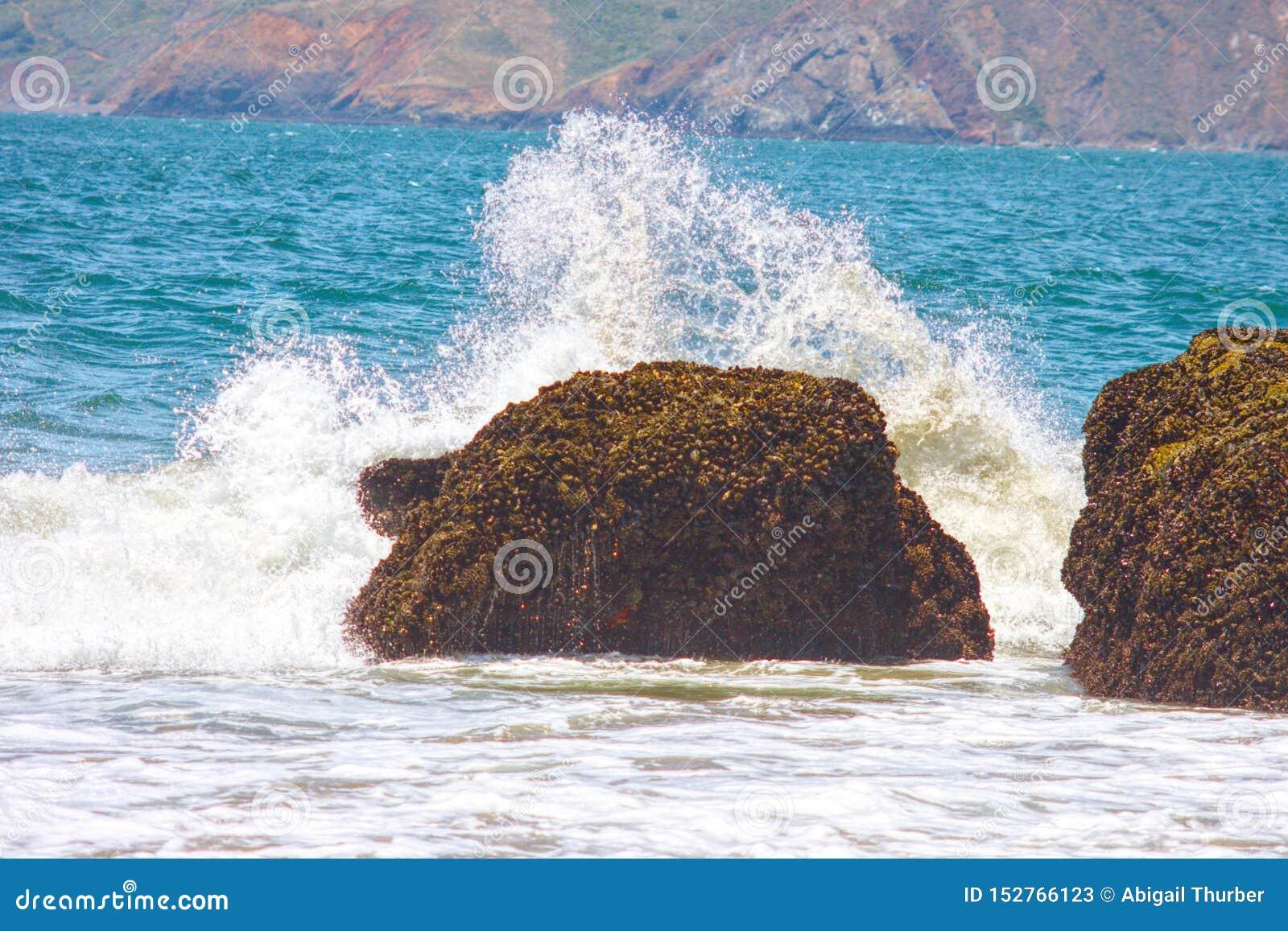 La spiaggia ha schiaffeggiato da un onda