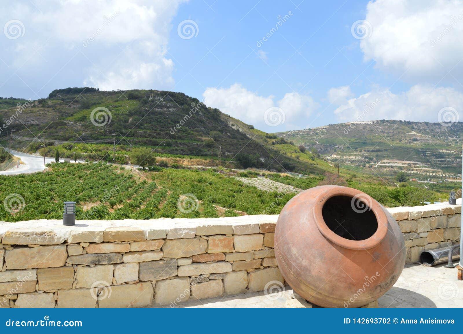 La splendeur des montagnes et du jeune vin