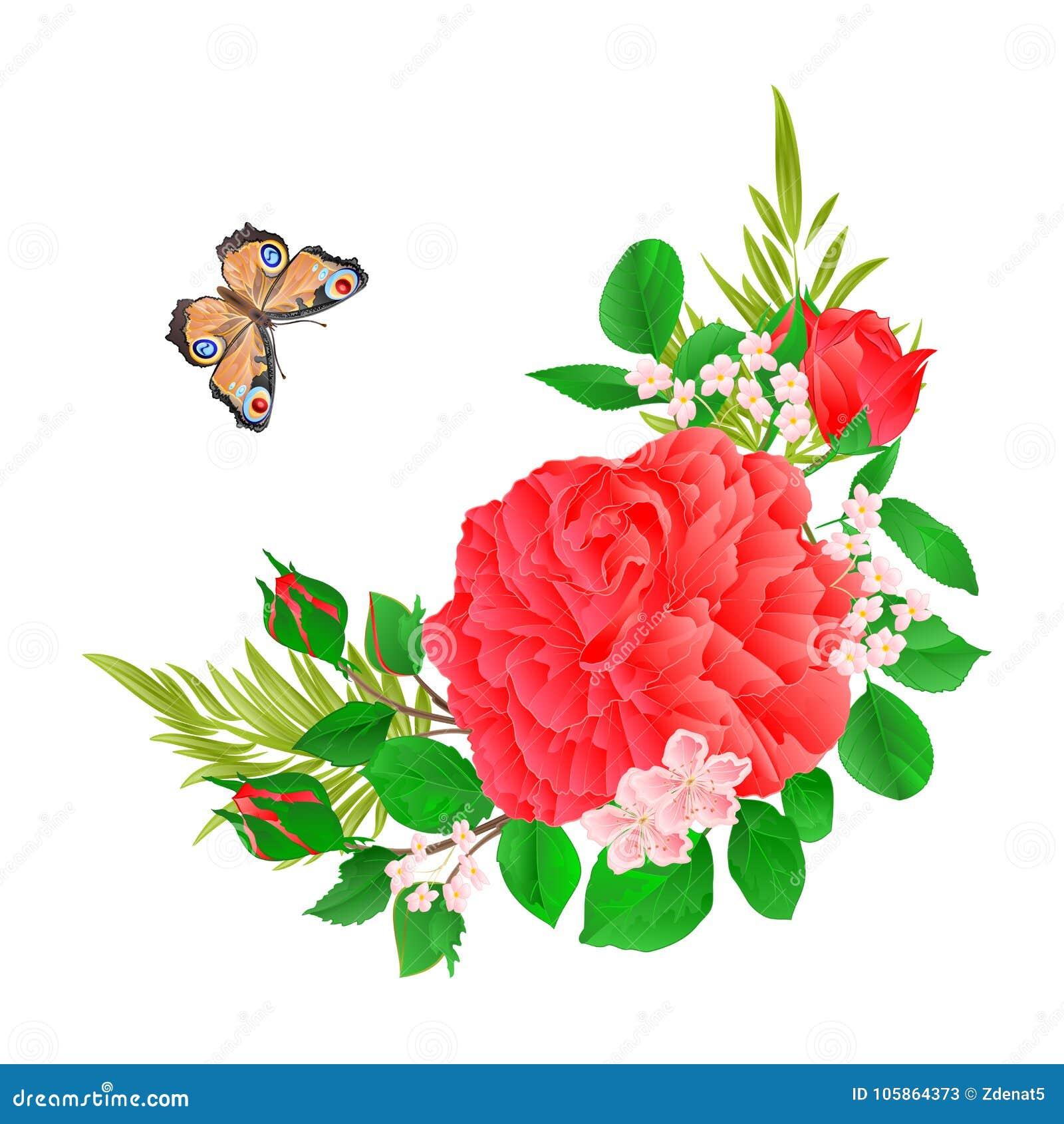 La struttura floreale con il fondo festivo d annata rosa della farfalla e di Rosa vector l illustrazione editabile
