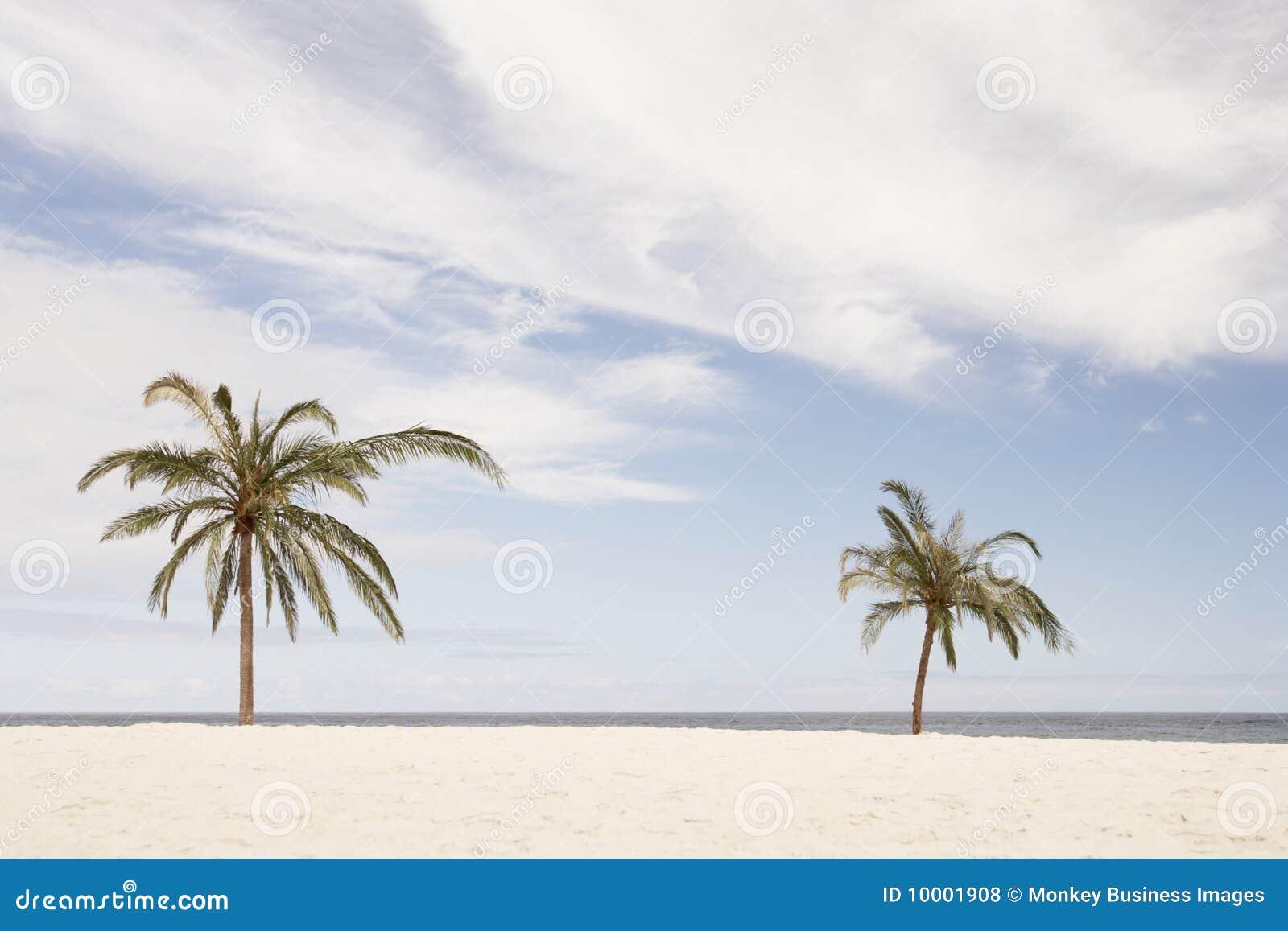 La Sudafrica, Palm Beach