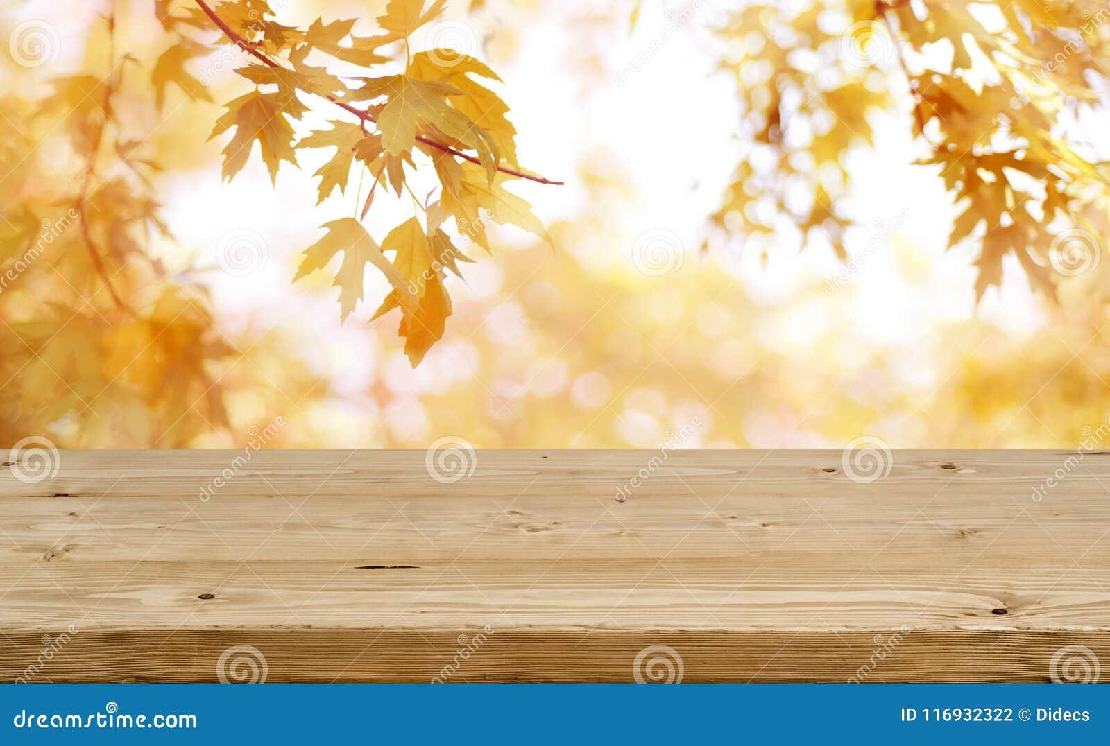 La tabla de madera delante del extracto empañó el fondo colorido del otoño