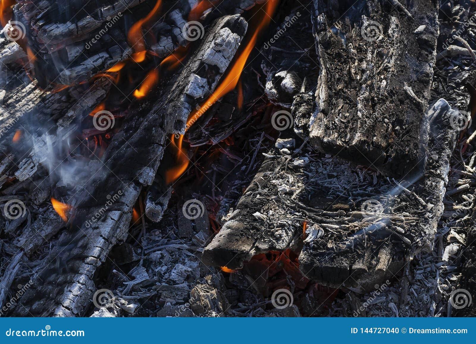 La textura de la leña que quema en el fuego