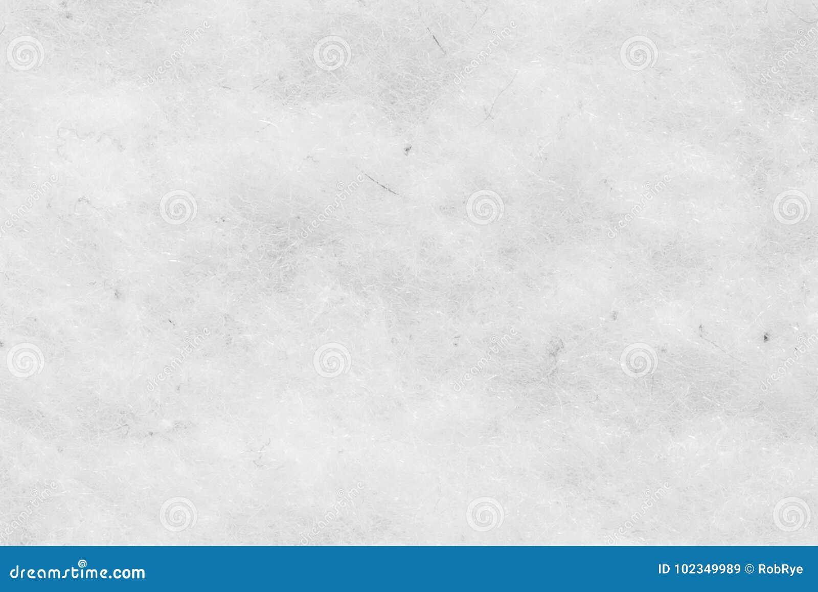 La Texture Blanche De Tapis De Laine Avec Les Modeles Naturels Peut