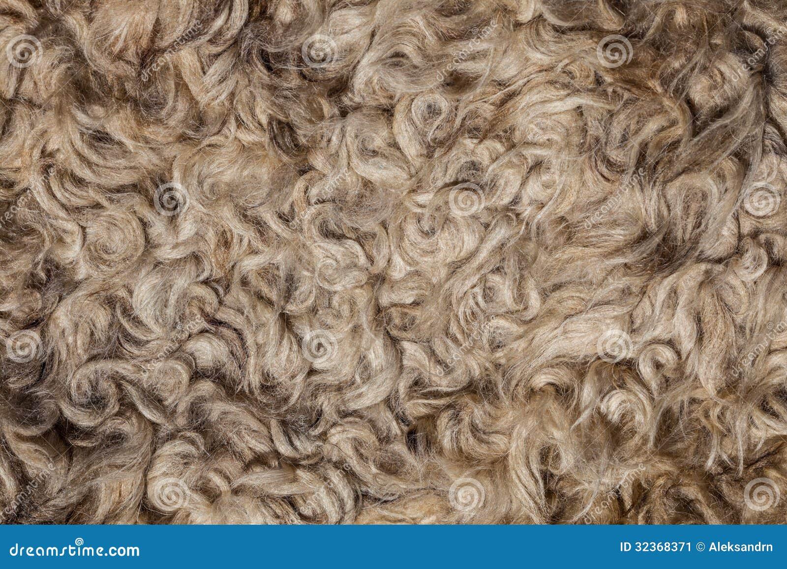 La texture de la peau de mouton de fourrure image stock - Nettoyer peau de mouton ...