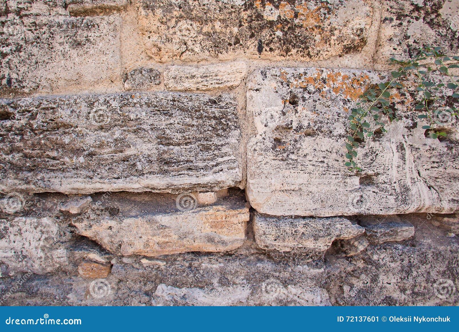 la texture du mur en pierre limestone coquina fond vieux murs photo stock image 72137601. Black Bedroom Furniture Sets. Home Design Ideas