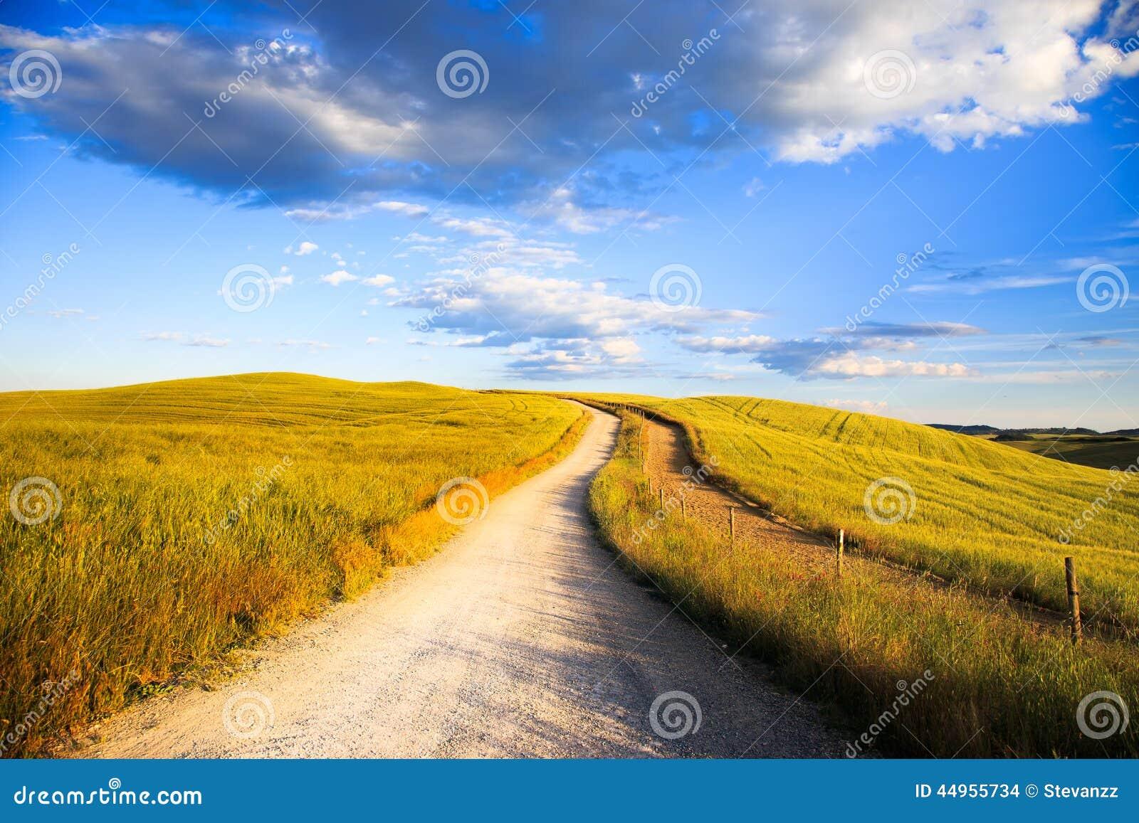 La toscana strada bianca sulla collina di rotolamento for Piani di campagna in collina