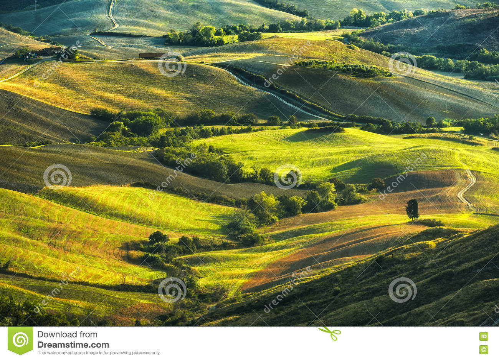La Toscane, Rolling Hills sur le coucher du soleil Horizontal rural F vert