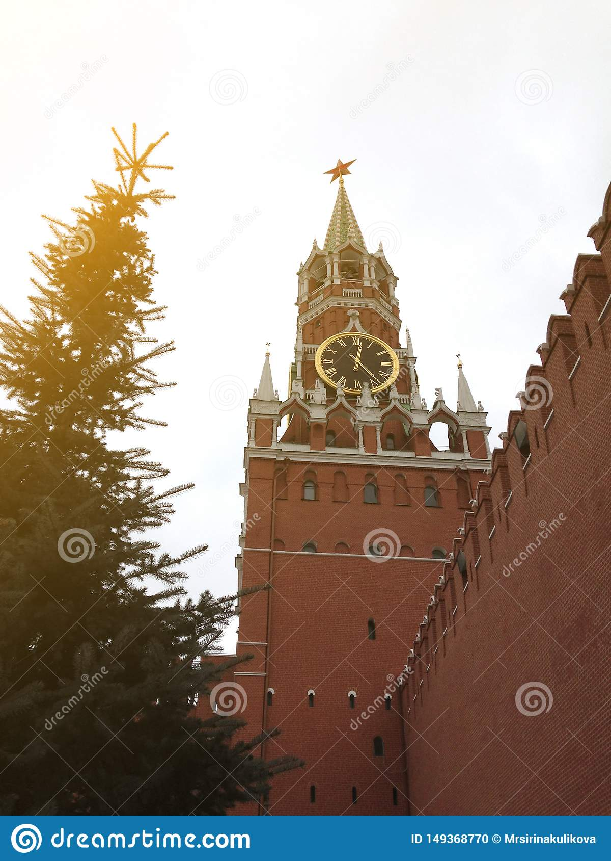 La tour principale de Moscou Kremlin avec des horloge-carillons ?normes et un mur de brique rouge pr?s du haut sapin