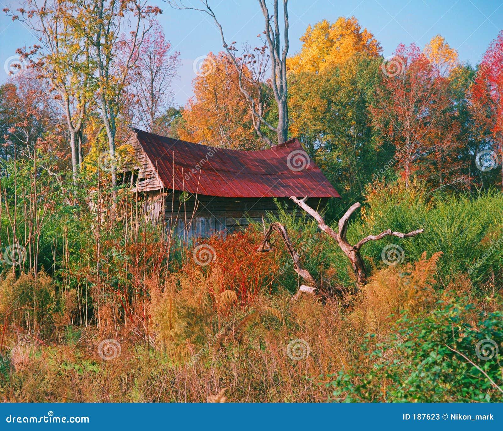 La vecchia casa stracciata