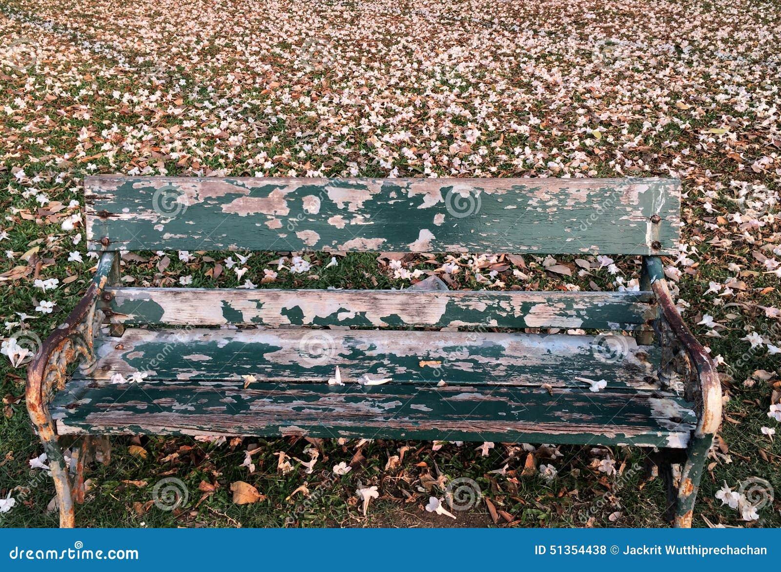 Sedia Pantone Rosa : La vecchia singola sedia lunga con goccia rosa dei fiori ha