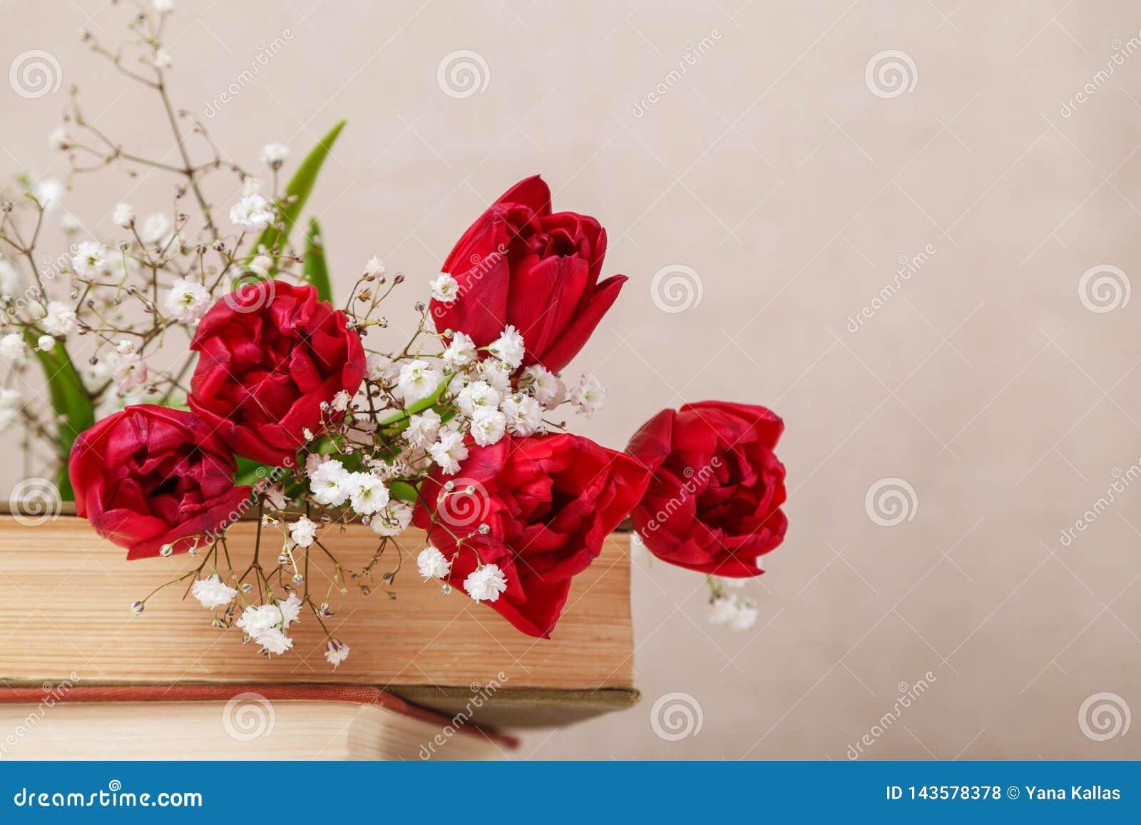 La vie de distillateur de cru avec les tulipes rouges d un ressort et livres sur un fond beige Le jour de m?re, concept du jour d