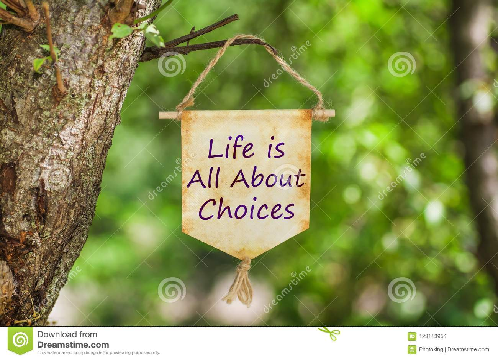 La vie est tout au sujet des choix sur le rouleau de papier