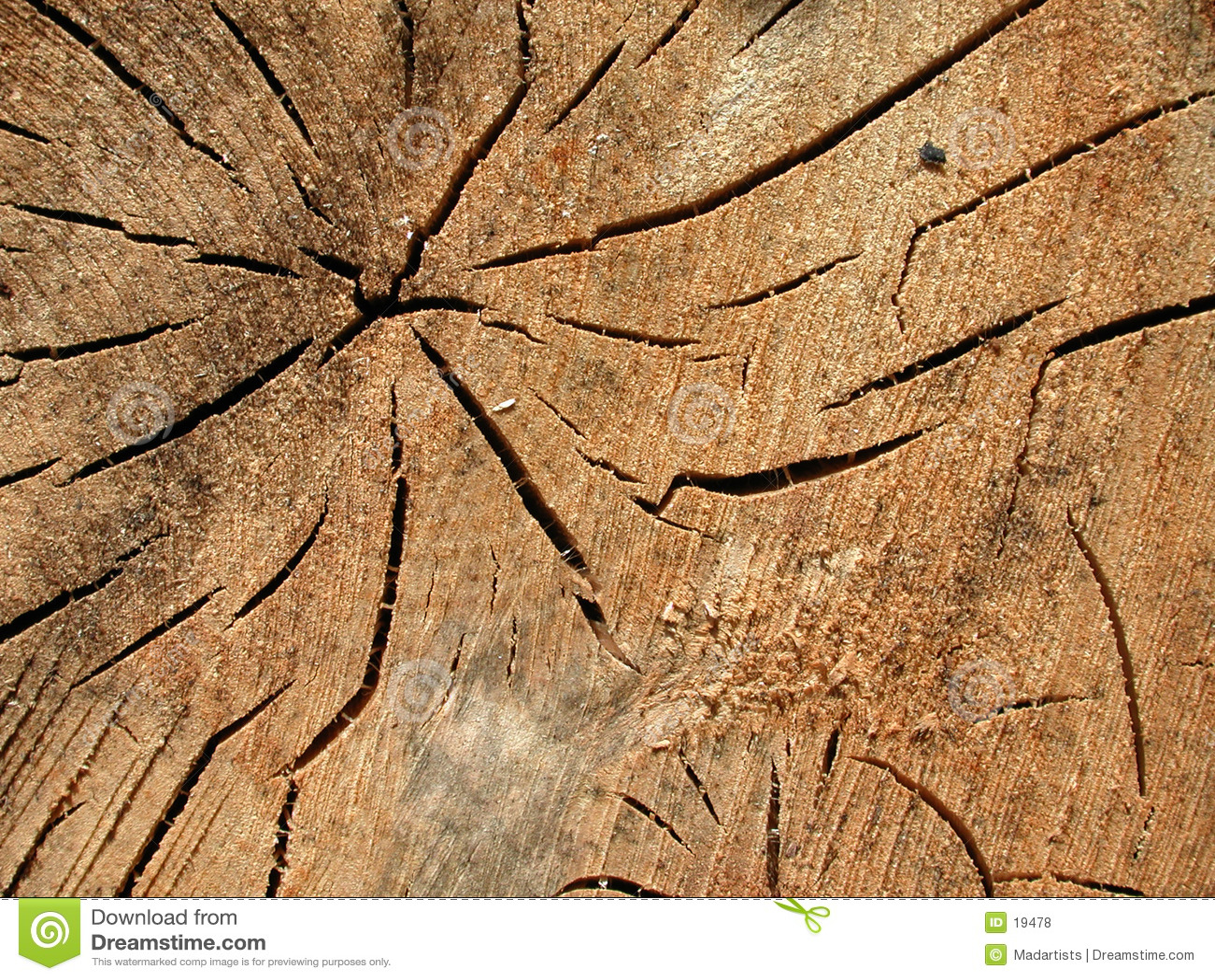 La vieille texture en bois fissure la texture