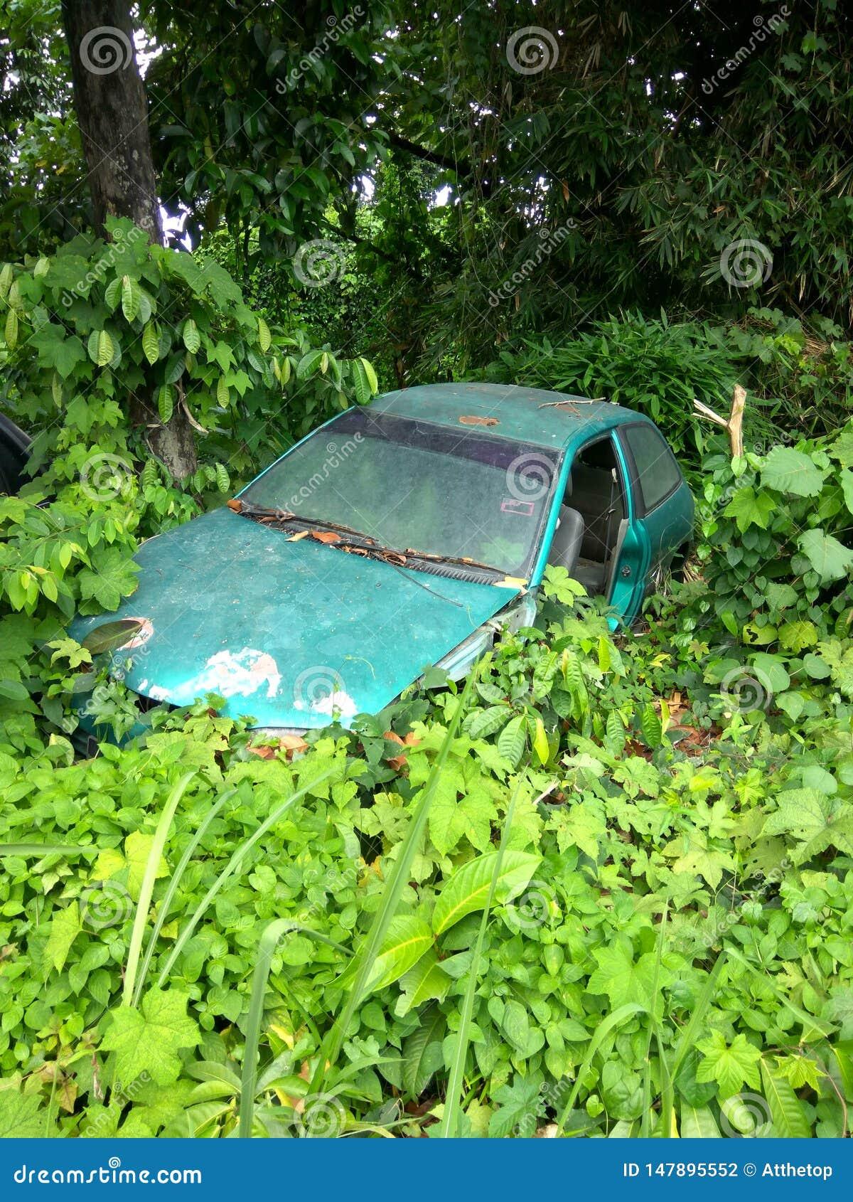 La vieille voiture verte a vidé dans un buisson