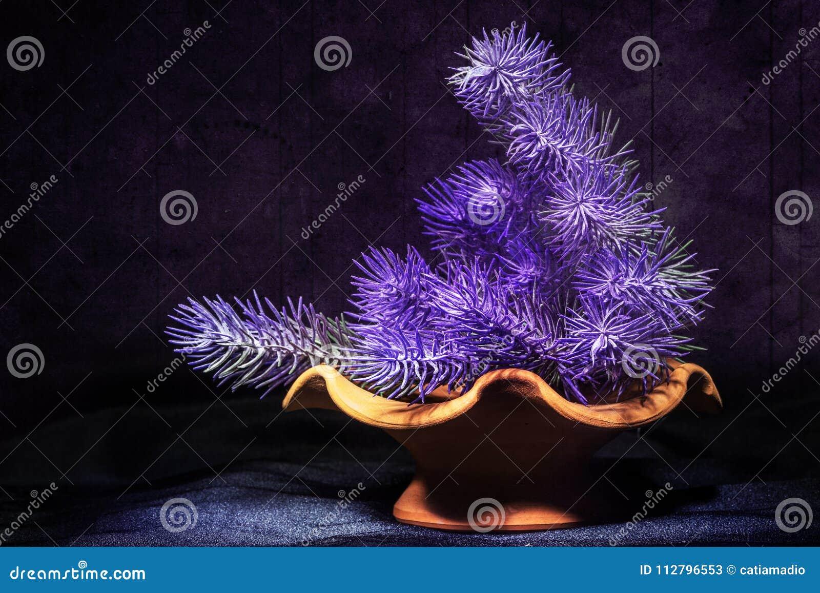 La viola fiorisce la composizione in lerciume