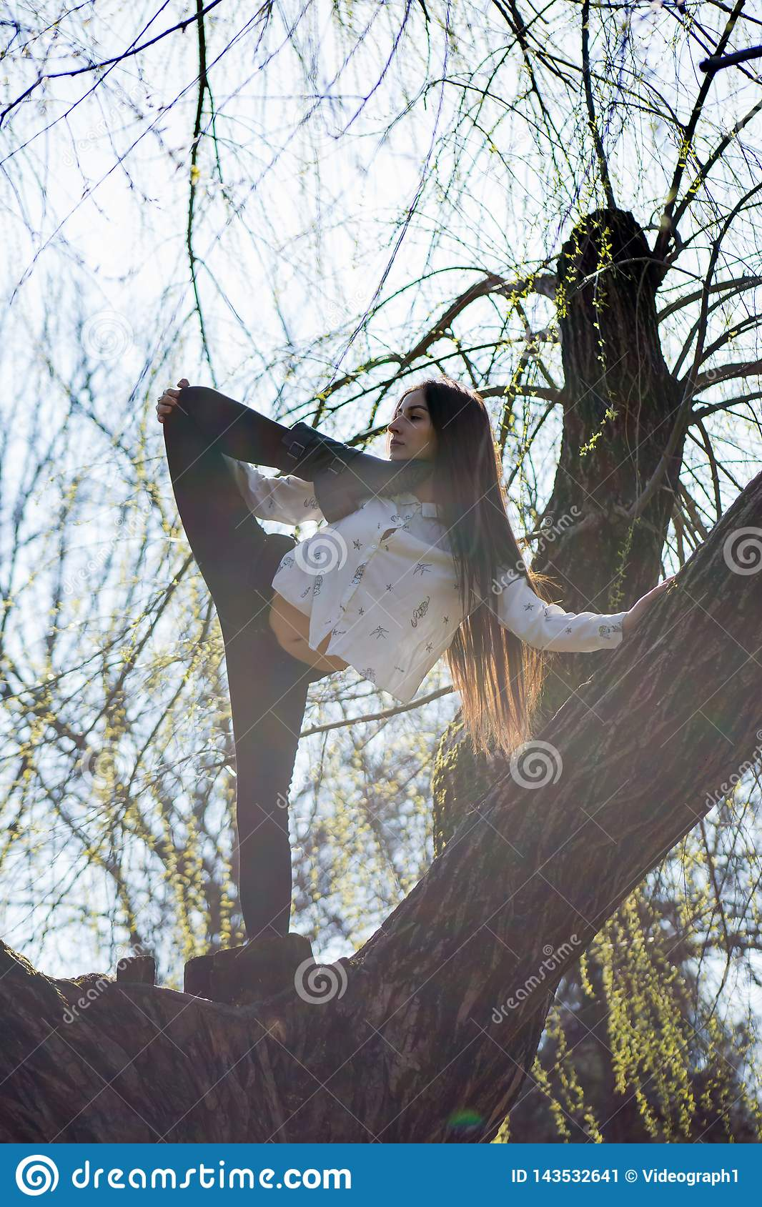 La visión inferior que encanta al gimnasta delgado lindo de la muchacha está encima de árbol inusual sin las hojas y ejecuta elem